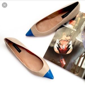 Ann Taylor | Pointy Toe Blue Flats Sz 7.5